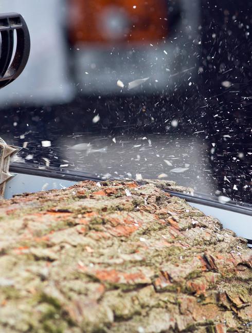 Registador de madeira com serra cortando