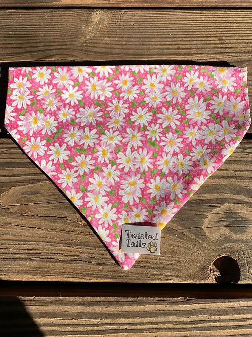 Pink Paisley bandana or bowtie