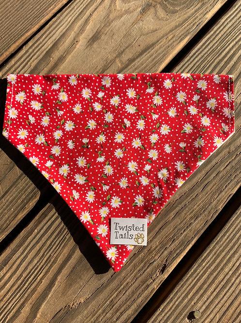 Red Paisley Bandana or Bowtie