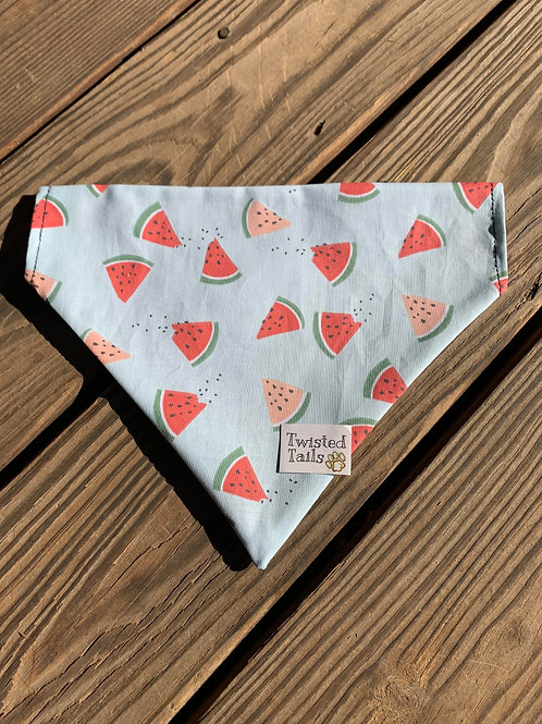 Watermelon Bandana or bowtie