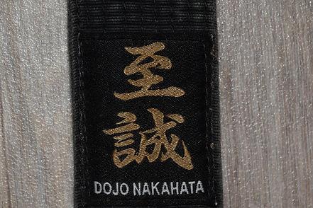 Daisho Ryu Karate.JPG