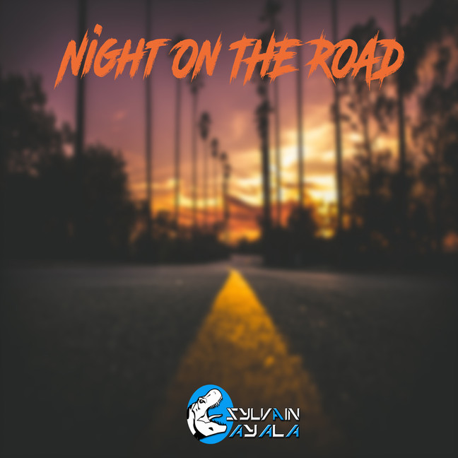 Night on the road