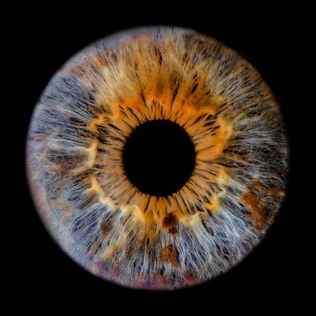 Irisfotografie Claudia Ristau The Unique Eye