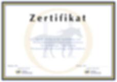 Coachingausbildung Zürich