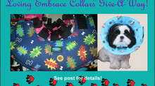 Another set of donation e-collars!