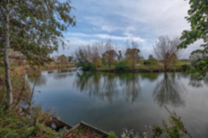 main lake-min.jpg
