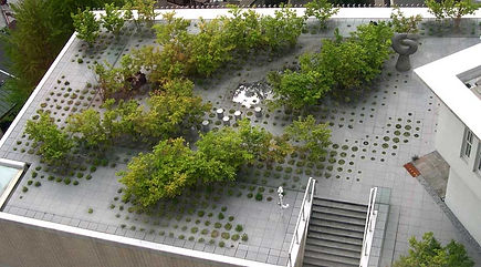 озеленение кровель, озеленение крыш, благоустройство крыш, дизайн крыш