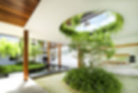 озеленение и дизайн