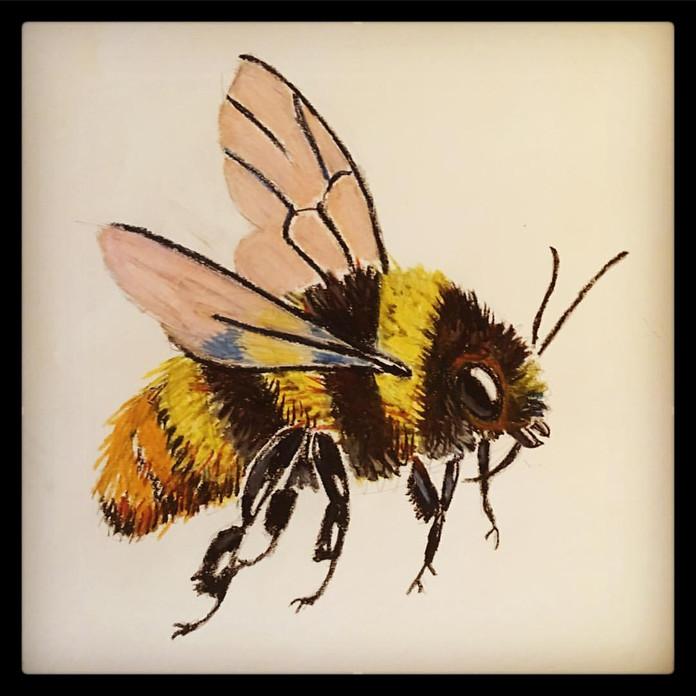 Bee (pastels)