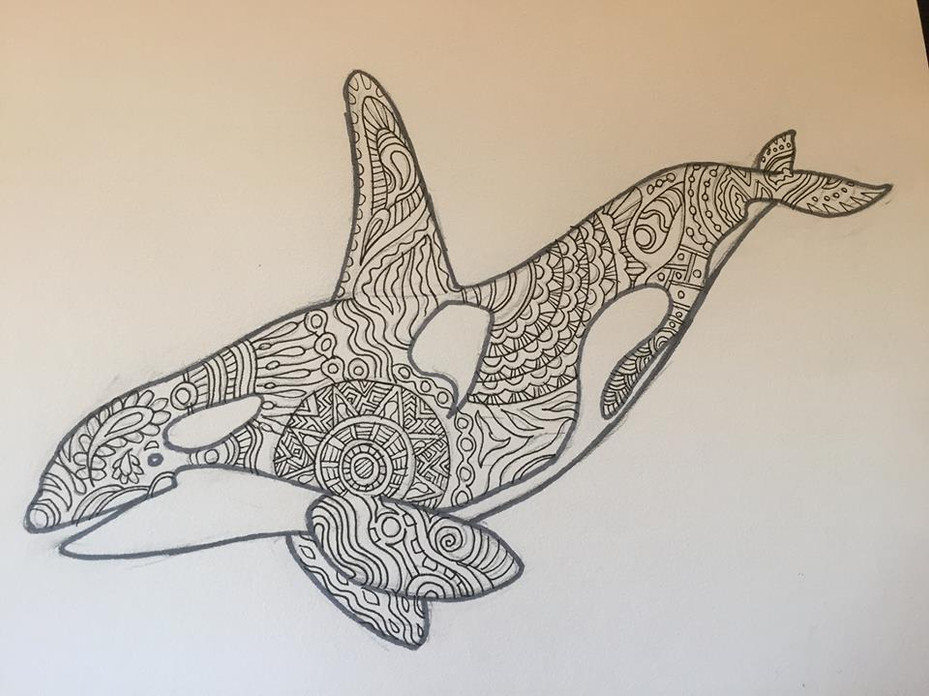 Orca for coloring (pen and ink)