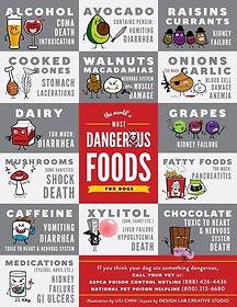 foods-bad-for-dgs.jpg
