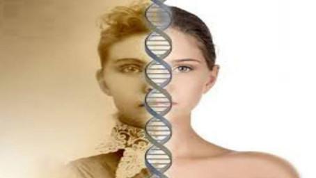 Recordação de uma vida passada ou memória genética?