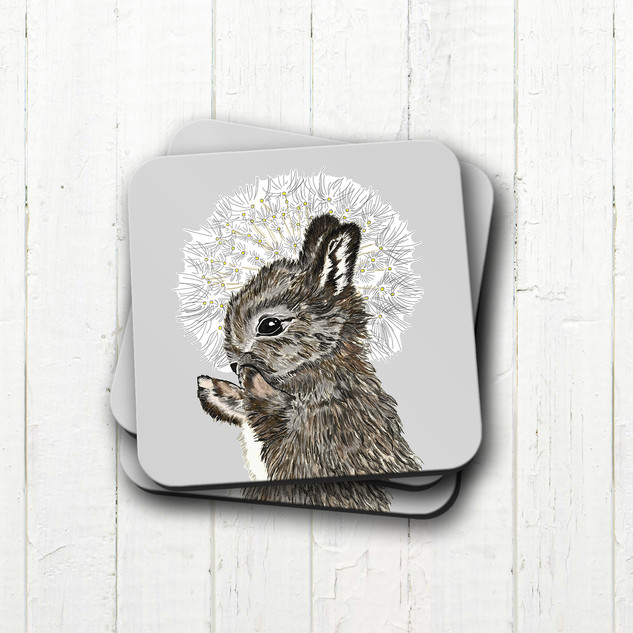 rabbit coaster 2.jpg
