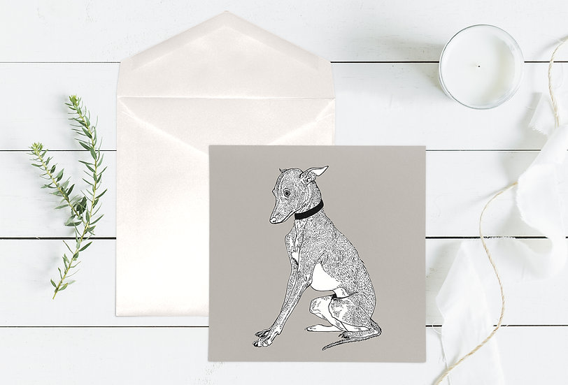 Little Whippet Greeting Card