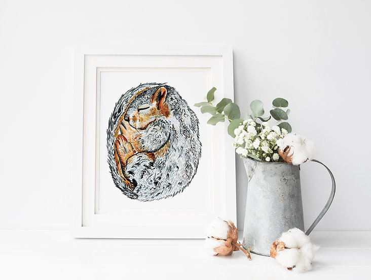Curled Squirrel A5 Textured Art Print