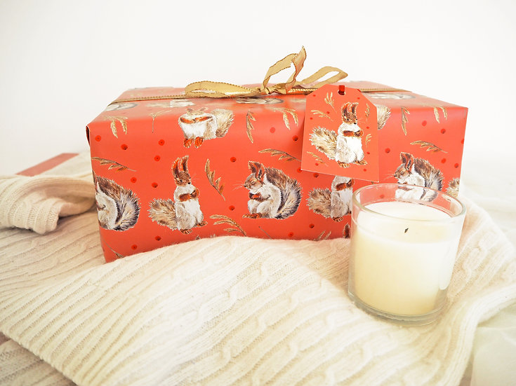 Red Squirrels Christmas Gift Wrap