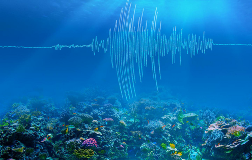 Scientists unearth tremors to 'hear' the ocean warming