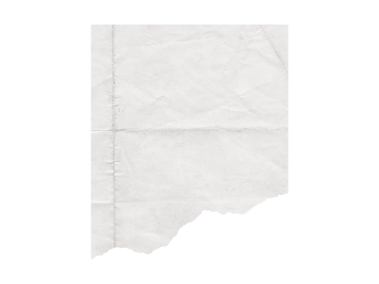Blank 1600 x 1200 (1).png