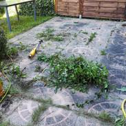 Desherbage terrasse (1).jpg