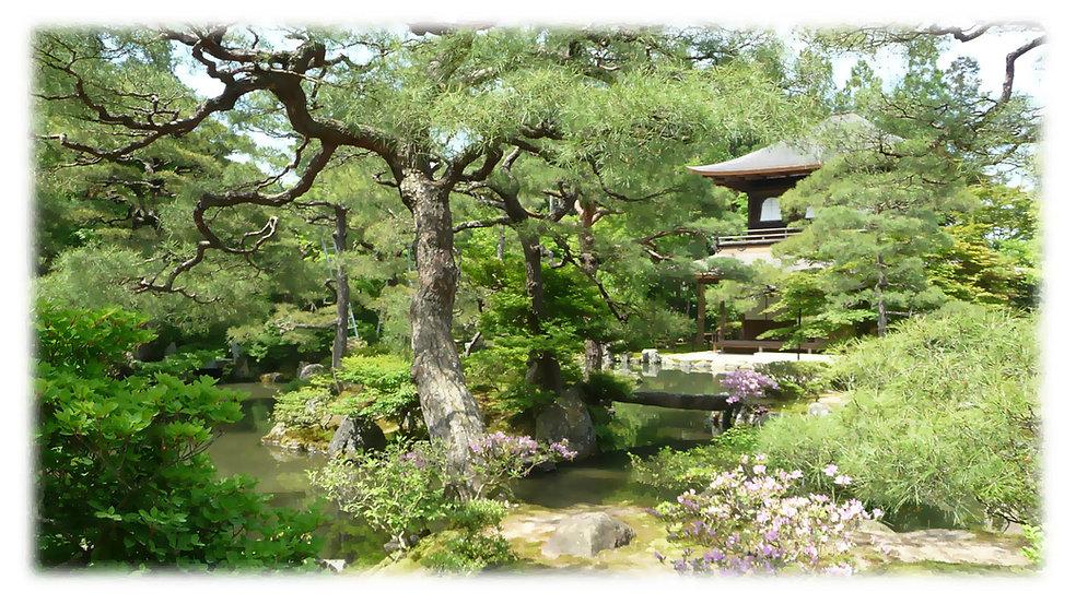 kyoto_landscape_web.jpg