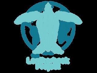 leatherback_black.png