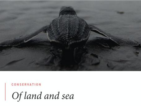 Feature in Oceanographic