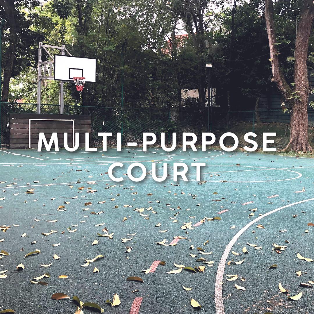 Multi-Purpose Court