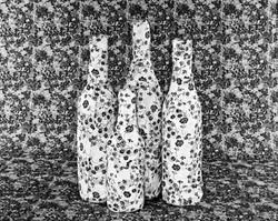 Bottles On The Ground
