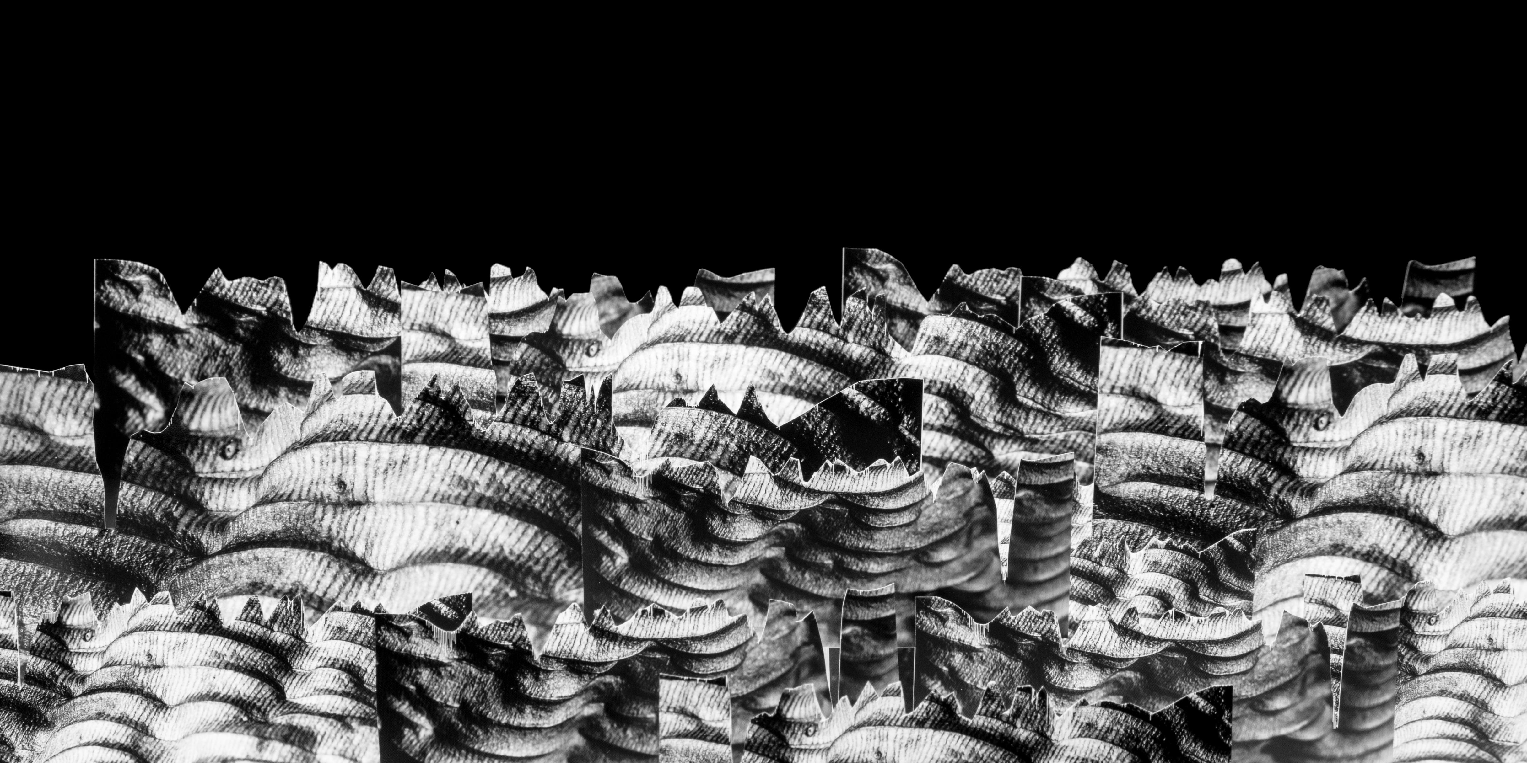 Landscapes__004