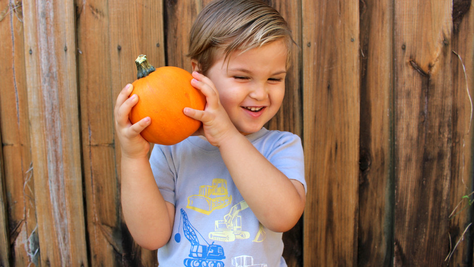 What To Do With an Old Pumpkin