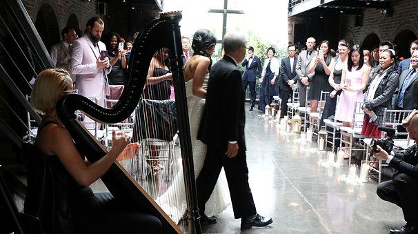 Harpist Los Angeles 4.jpg