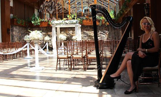 Classcail Harp Wedding_1.jpg