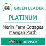 green-leader-award