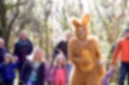 Wild-Spring-Hare.jpg