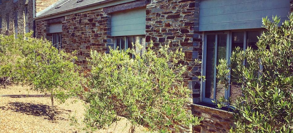 exterior-rear-landscape.jpg