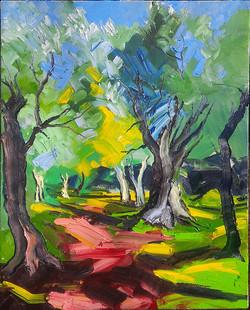 L'allée_du_Parc_des_oliviers