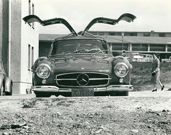 practicing in the Gullwing