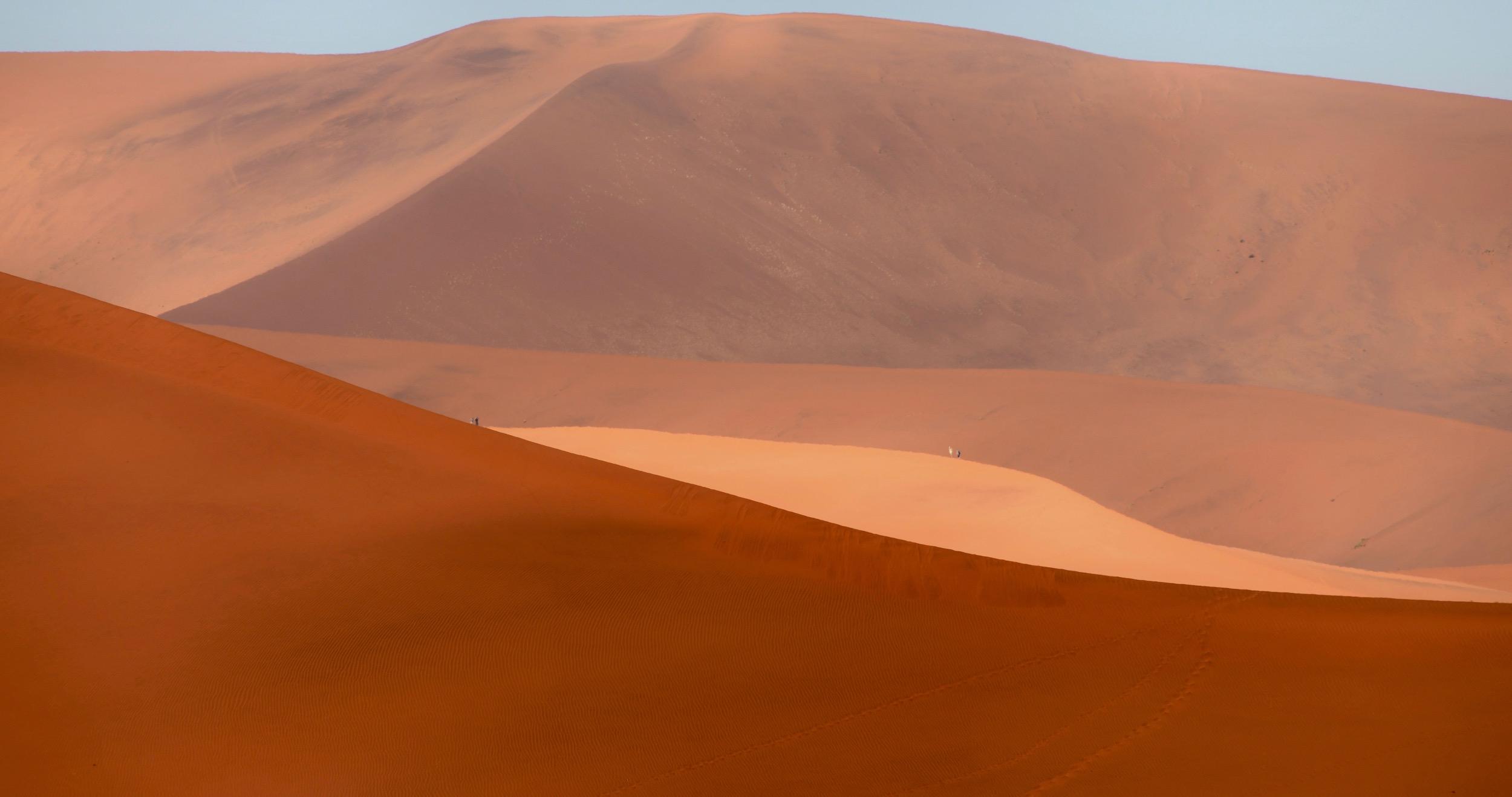 Dünenmeere der Namib Wüste