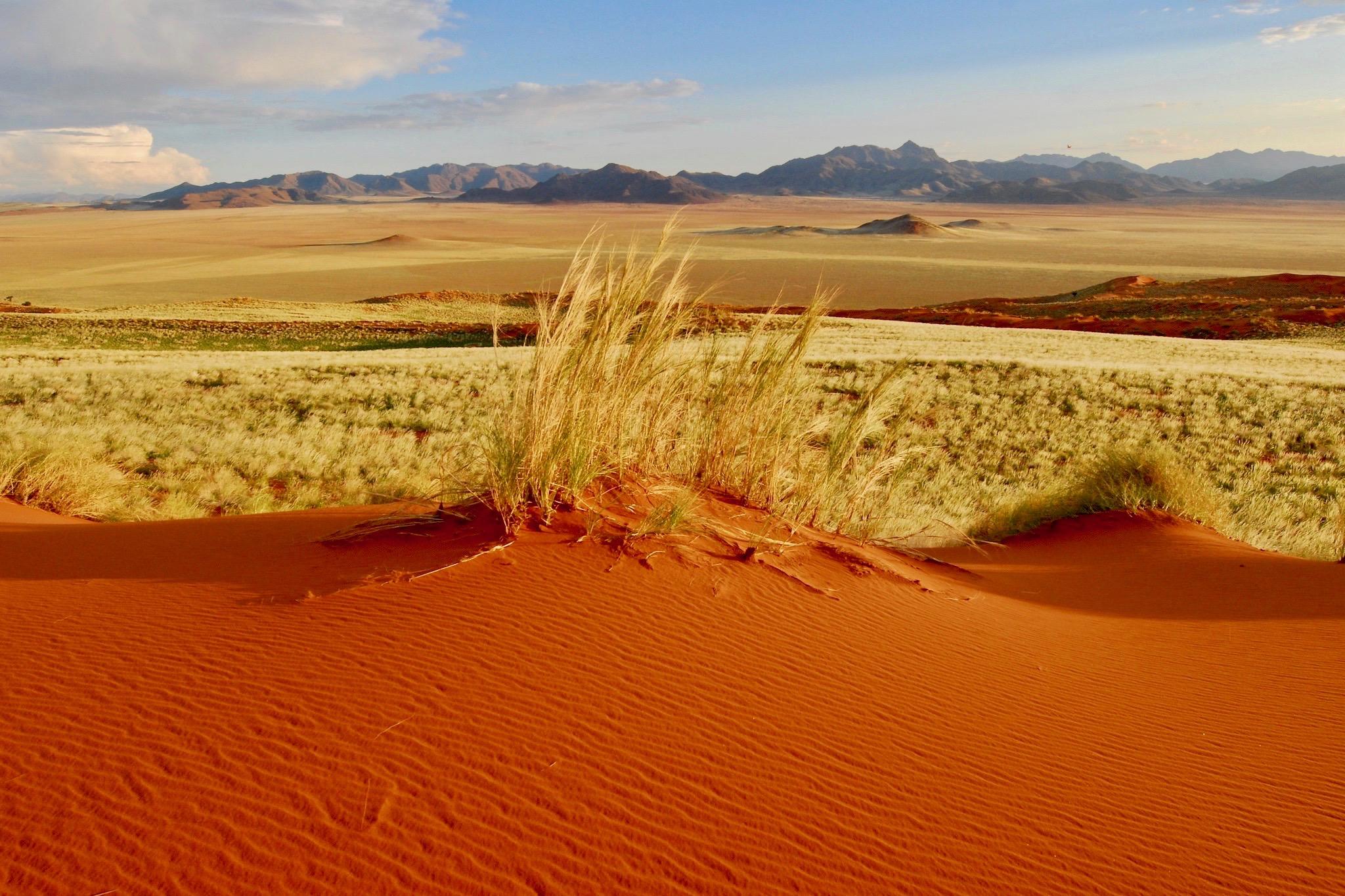 Farbenspiel bei NamibRand