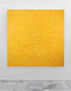 Yellow-muj.jpg