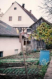 Widemgut_01.jpg