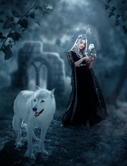 Sorceress and Wolf   Wolf Fashion Editorial   Book Cover Design   Romantic Book Designs  Ethereal Po