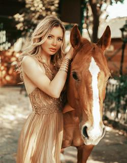Horse Photoshoot Temecula   Horse Photography Los Angeles   Horse Portraiture