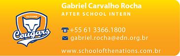 Gabriel Carvalho Rocha-01.png