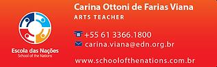 Carina Ottoni de Farias Viana-01.png