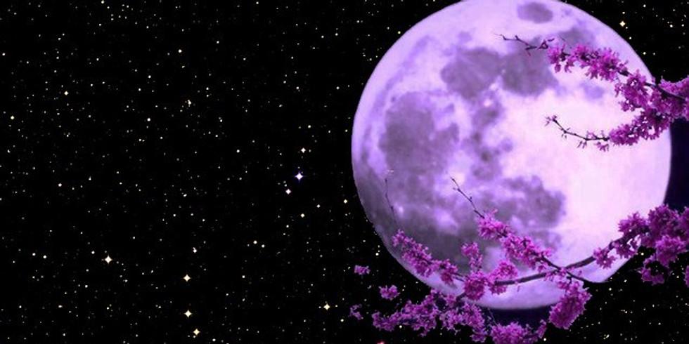 Full Moon Women's Circle ~ 'Self love as a Healing Practice'