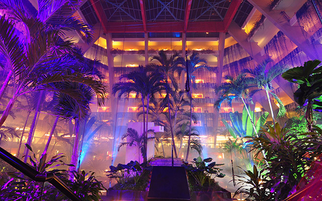 Grand Oasis8