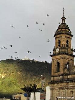 Poznávací zájezd do Kolumbie listopad 2018