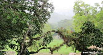 Viajes a Honduras Copán ruinas Ranatours