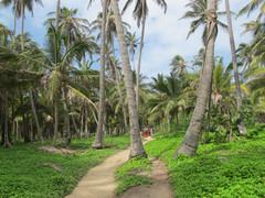 Poznávací zájezd do Kolumbie Cabo San Juan de Guia